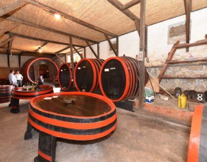 Gudurica vinski brend